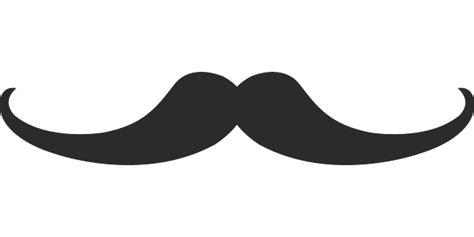 Image Vectorielle Gratuite Moustache Homme Dessin