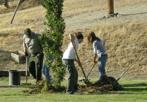 File:US Army 51694 The Corps' Pine Flat Lake, volunteers plant 28 trees to celebrate National