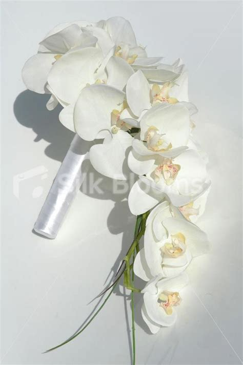 best 25 orchid bridal bouquets ideas on purple orchid bouquet orchid bouquet and