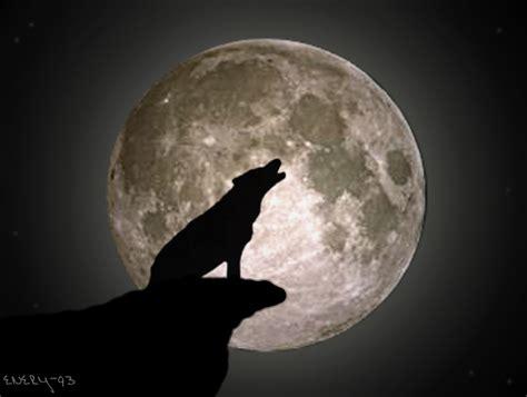 luna luna de lobos lobo y luna by enery 93 on