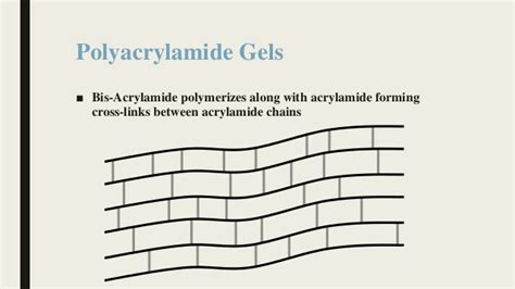 How Does Mba Cross Link Acrylamide by Introduction To Polyacrylamide Gel Electrophoresis