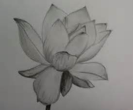 Lotus Pencil Sketch Pencil Of Lotus Flower By 1koolwhip On Deviantart
