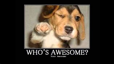 who s awesome you re skillet who s awesome you re awesome