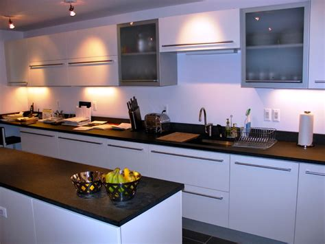Contemporary Kitchen Cabinets Chicago Contemporary Kitchens By Dresner Design Modern Kitchen Chicago By Dresner Design