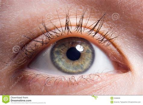 imagenes ojos ojo humano gallery