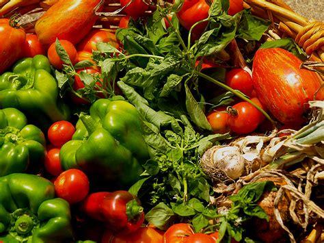 Vegetable Harvest Summer Garden Vegetables