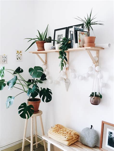 plant used as decoration casajangui the hanging plants shelves decor boho popular pins home bedroom decor plant