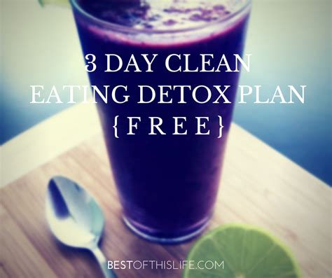 3 Day Jumpstart Smoothie Detox by The 3 Day Jump Start Smoothie Detox The Best Of This