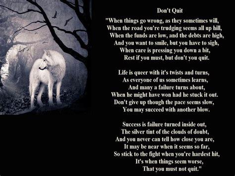 wolfe lyrics 1236 best wolf lyrics images on wolves dogs