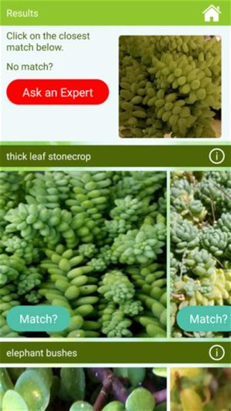 Garden Answers Plant The 5 Android Gardening Apps You Need This Techhive