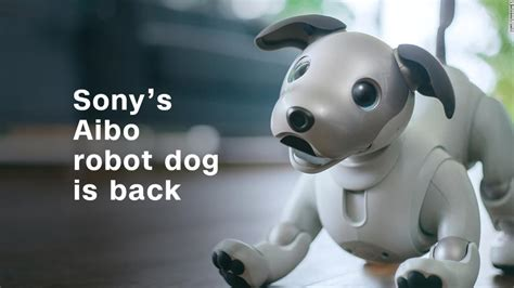 sony robot sony s robot aibo makes a big splash at ces 2018 jan 10 2018