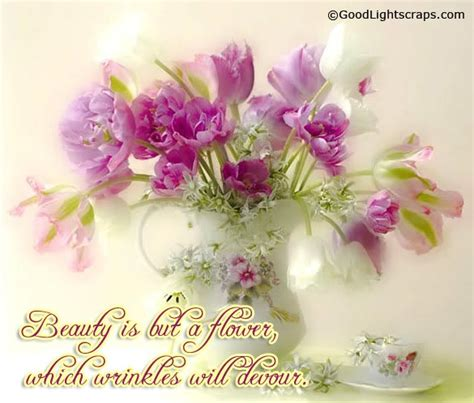 flowers scraps pictures images graphics for myspace flower pictures flower images glitters for orkut
