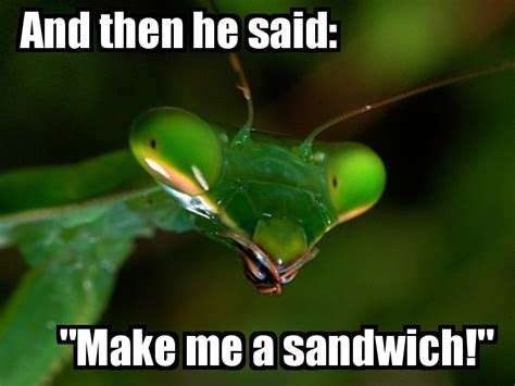 Make Me A Sandwich Meme - image 839629 make me a sandwich know your meme