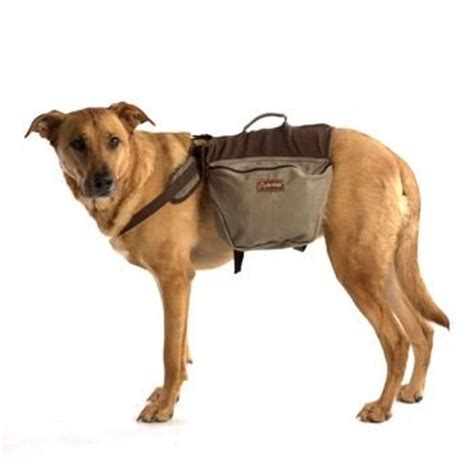 backpack for dogs to wear favored backpacks dogs wear for hiking or just a walk to carry their own food