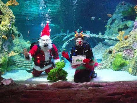 christmas at legoland discovery center and sea life aquarium