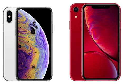 iphone xr vs iphone xs the verdict gearopen