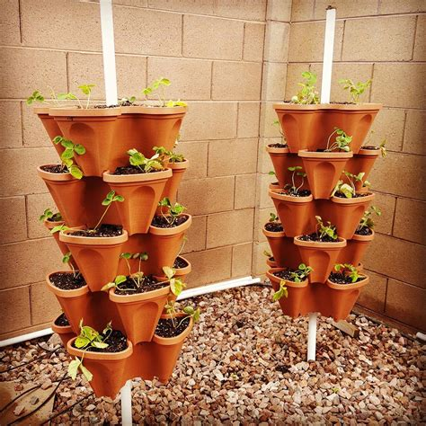 Stackable Planters by Apartment Garden Strawberries Diy Vertical Gardening