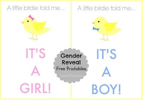 Boy Or Gender Reveal Printable