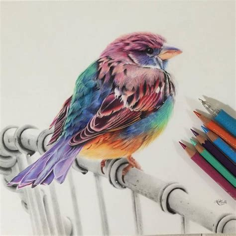 color pencil drawings 50 beautiful color pencil drawings from top artists around