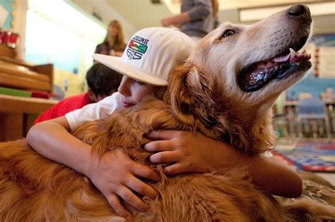 autism therapy dogs 11 studies that prove pets are for your health mnn nature network