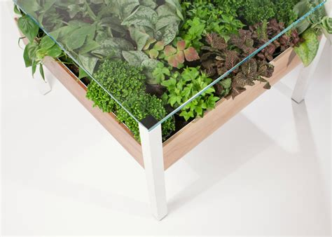 plant table the living table is a verdant indoor garden in your
