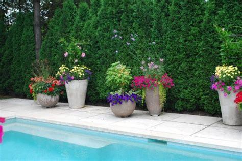 Poolside Planters by Poolside Plantings Dirt Simple