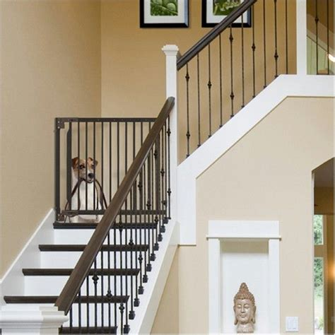 25 best ideas about stair 25 best ideas about baby gates stairs on pet