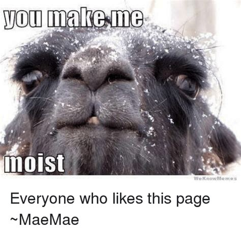 You Make Me Moist Meme - 25 best memes about moist moist memes