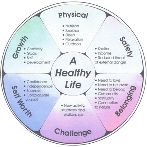 Wellness Wheel Worksheet by Wellness Wheel Wellness