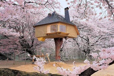 best tree houses in the world 15 best treehouses in the world that make the dreamiest