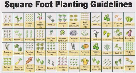 Free Vegetable Garden Layout Eat Live Grow Paleo Square Foot Gardening Planning