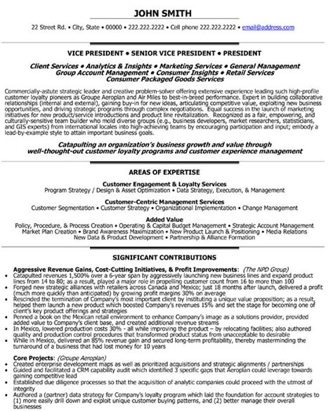 Resume Sles Vice President Marketing Senior Vice President Loyalty Resume Template Premium Resume Sles Exle