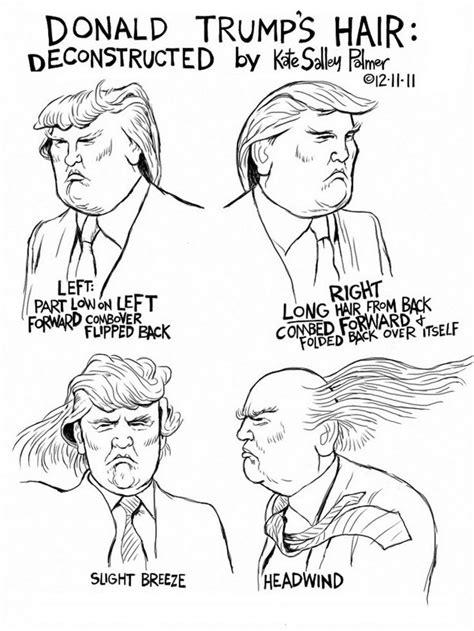 donald hair diagram hair diagram how to laugh for dummies