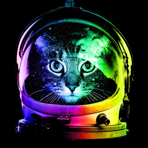 design by humans owner astronaut cat by design by humans on deviantart