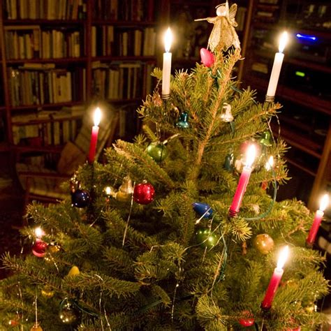 light em up candles in christmas trees blog advent