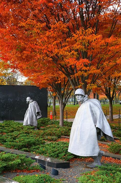 Potomac Gardens Dc by Usa Washington Dc West Potomac Gardens The Korean War Memorial In Autumn By Steven