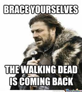 your selves brace yourselves the brace yourselves the walking dead
