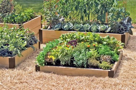 small wood diy raised bed designs vegetable gardens ideas