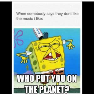 Who Put You On The Planet Meme - music meme kappit