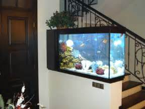 feng shui for wealth with fish tanks