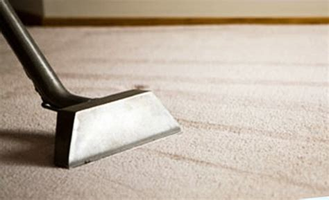 services carpet cleaning auckland acs commercial solutions