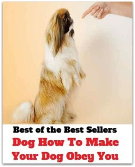 how to your to obey you best of the best sellers how to make your obey you submit to defer to bow