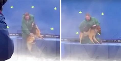 a s purpose abuse from the set of a s purpose shows abuse of terrified german shepherd