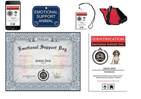 register as emotional support animal 17 best images about esa on therapy dogs service dogs and