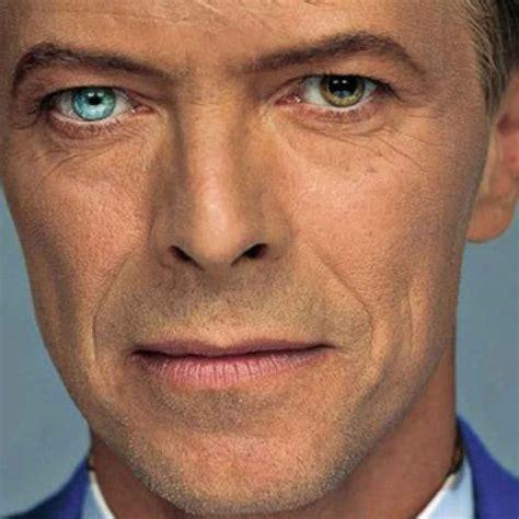 colore degli occhi diversi il mistero degli occhi di colore diverso di david bowie