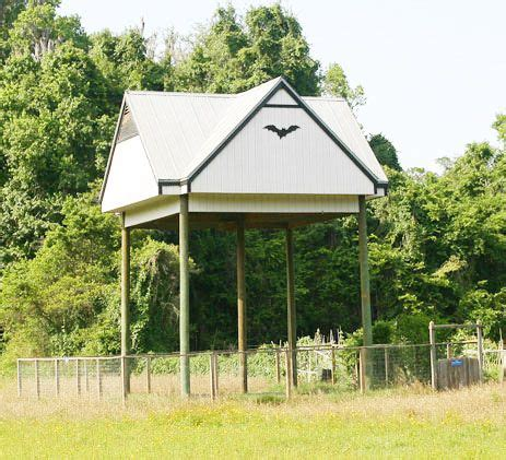 Bat House Plans Florida Free Bat House Plans Florida Woodworking Projects Plans