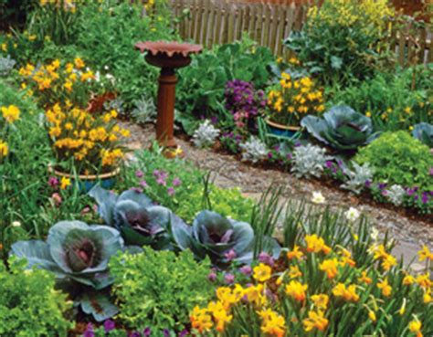 Edible Backyard Plants by Edible Landscaping Tips For Beginners Interior Design