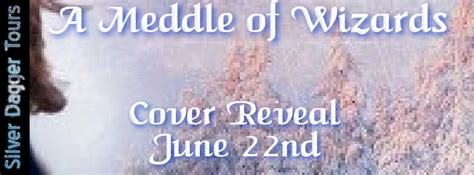 a meddle of wizards books of all she reads cover reveal for a meddle of