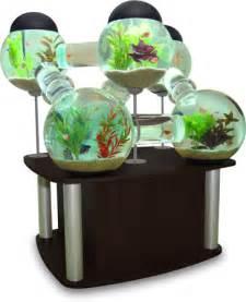 fish tanks petsmart fish tanks petsmart fish tanks sale petsmart fish
