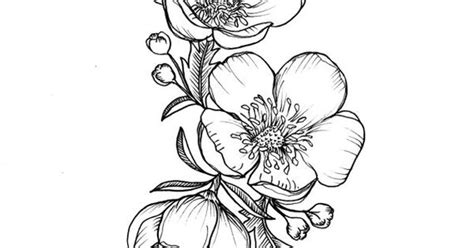 buttercup tattoo custom buttercup illustration for greer by